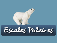 Excursions polaires